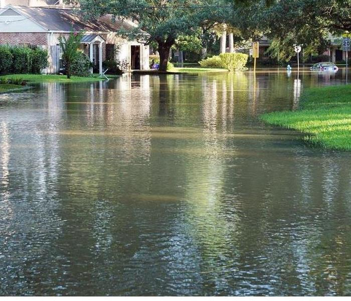 Storm Damage Minimize the Damage: Start Flood Cleanup Today