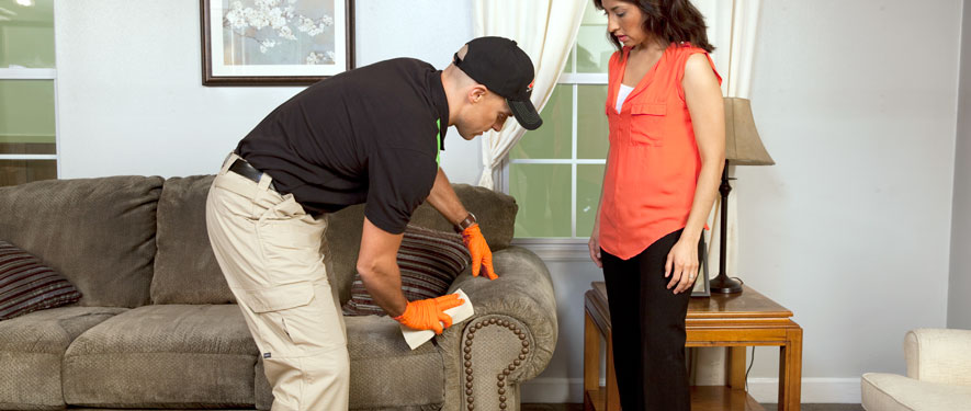 Pico Rivera, CA carpet upholstery cleaning